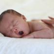 生まれたばかりの赤ちゃんの画像