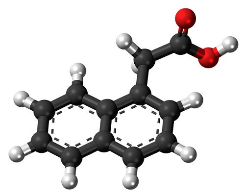 人体に害を及ぼすとされているナフタレンの分子図