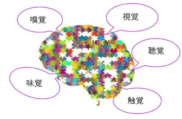 脳の検索システムはコンピューターの様なものです。