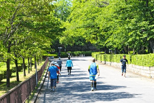高齢者が運動をしている画像
