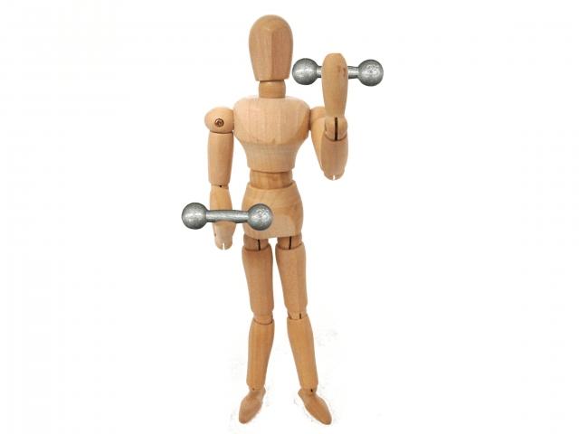 ダンベルを使ってトレーニングする人の画像